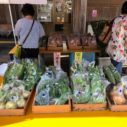 北山野菜市オープン